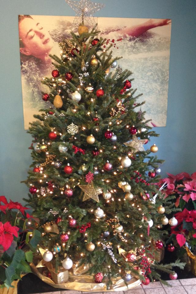 repechagechristmastree
